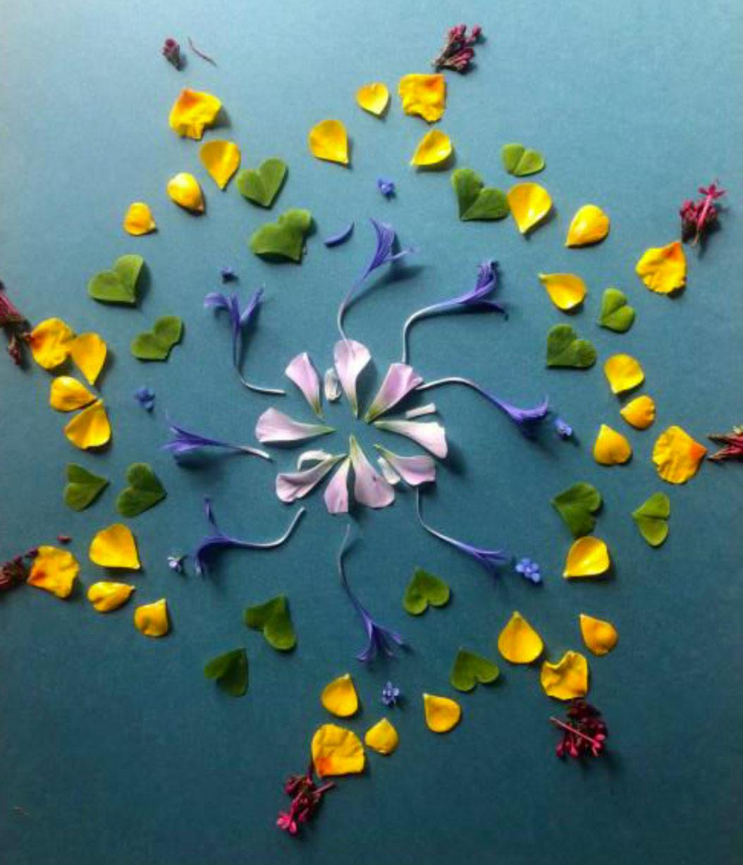 Petal and Leaf Art